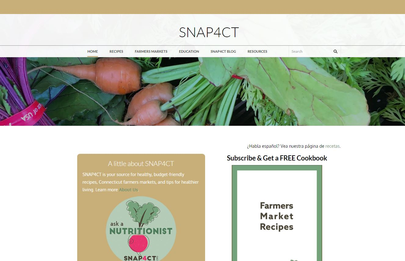 screenshot of snap4ct website