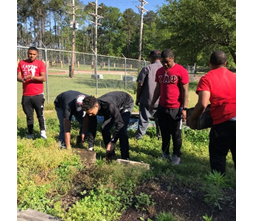 members of a fraternity help to relocate a garden