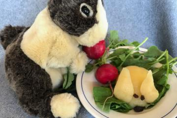 Stuffed rabbit next to a salad with a pear and radishes