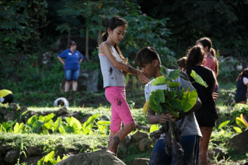 Children working in a garden