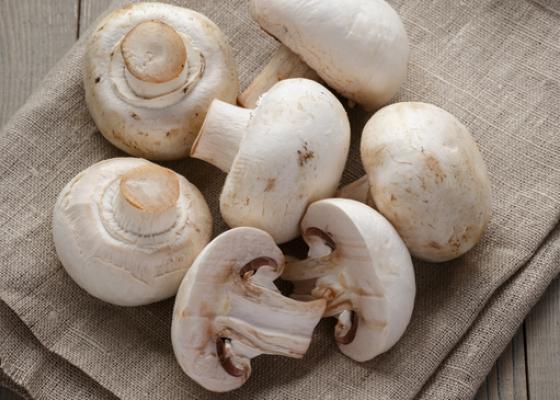 Mushrooms on a napkin