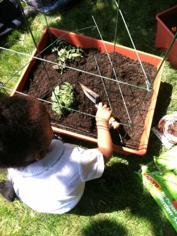 a garden plot with a child holding a trowel
