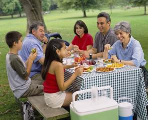 An extended family having a picnic at a park on a summer day