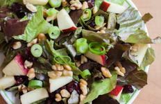 plate of salad with apples, dried cranberries, and walnuts