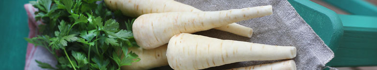 bunch of parsnips