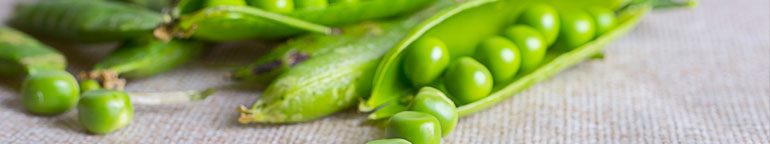 pea pods on a cloth background
