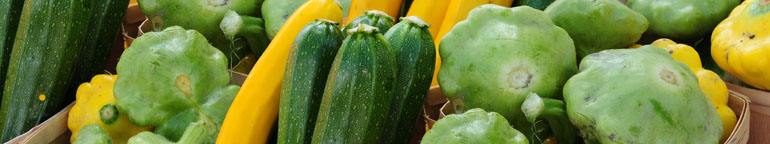 close-up of summer squash and zucchini in a crate