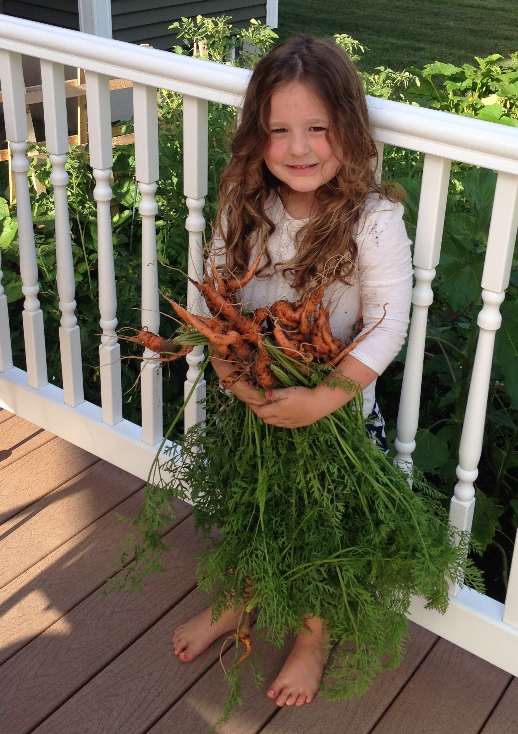 small girl holding a bunch of carrots she harvested